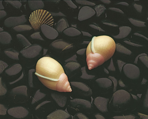 silicone-earrings